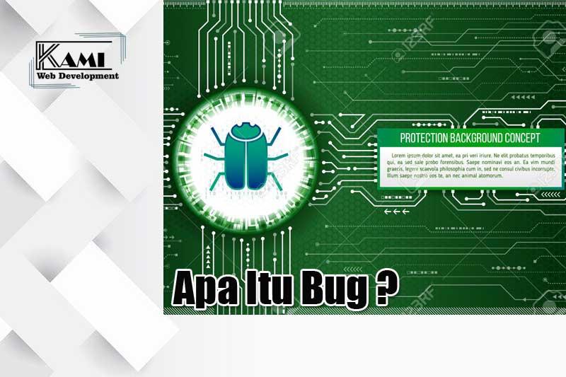 apa itu bug